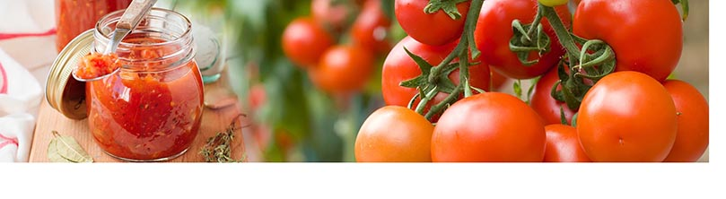 the determination of lactic acid in tomato and tomato derivatives throughout the production process. A simple, fast and reliable analysis system.