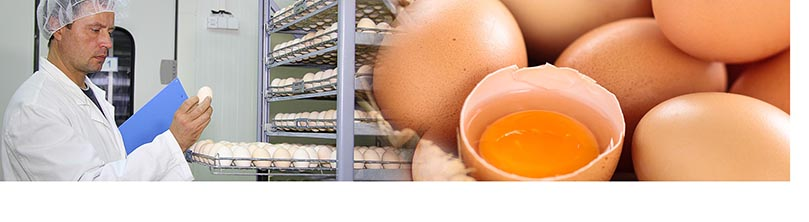 CDR FoodLab is the analysis system to run easy and fast quality controls on eggs and egg products, even on the production line.