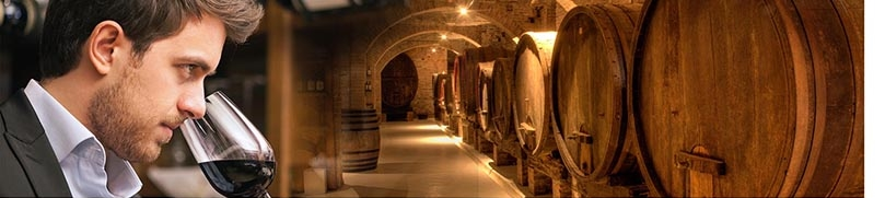 Wine testing in winery with CDR WineLab<sup>&reg;</sup>: fast simple reliable analysis system