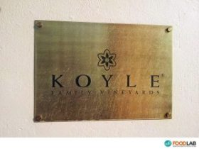 Analysis of the wine at Winery Koyle