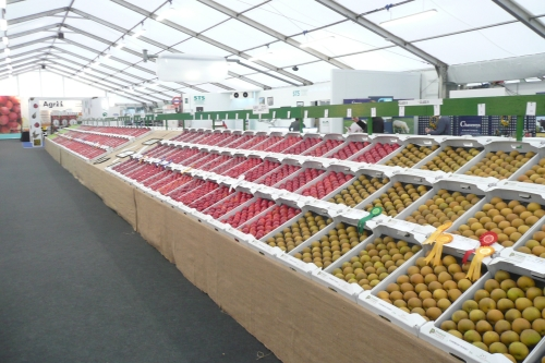 The exposition area at the National Fruit Show with the fruit and the prizes