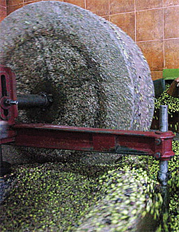 olive-oil-mill
