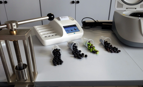 Centrifugal press to obtain from a sample of olives a small quantity of oil for analysis with CDR OxiTester