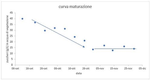 Curve of evolution over time of the concentration of glucose and fructose in olives from September to November